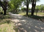 Lote en calle 123 e103 y 104 - Santa Teresita (3)